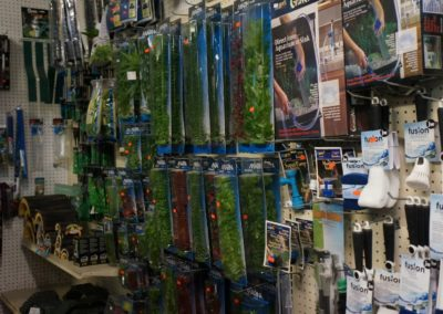aquarium-accessories