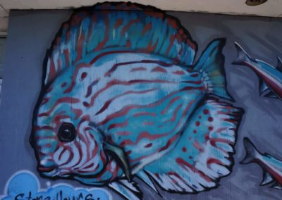 big-fish-graffiti