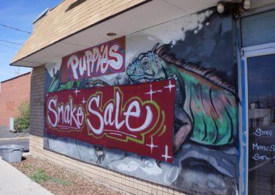 snake-sale